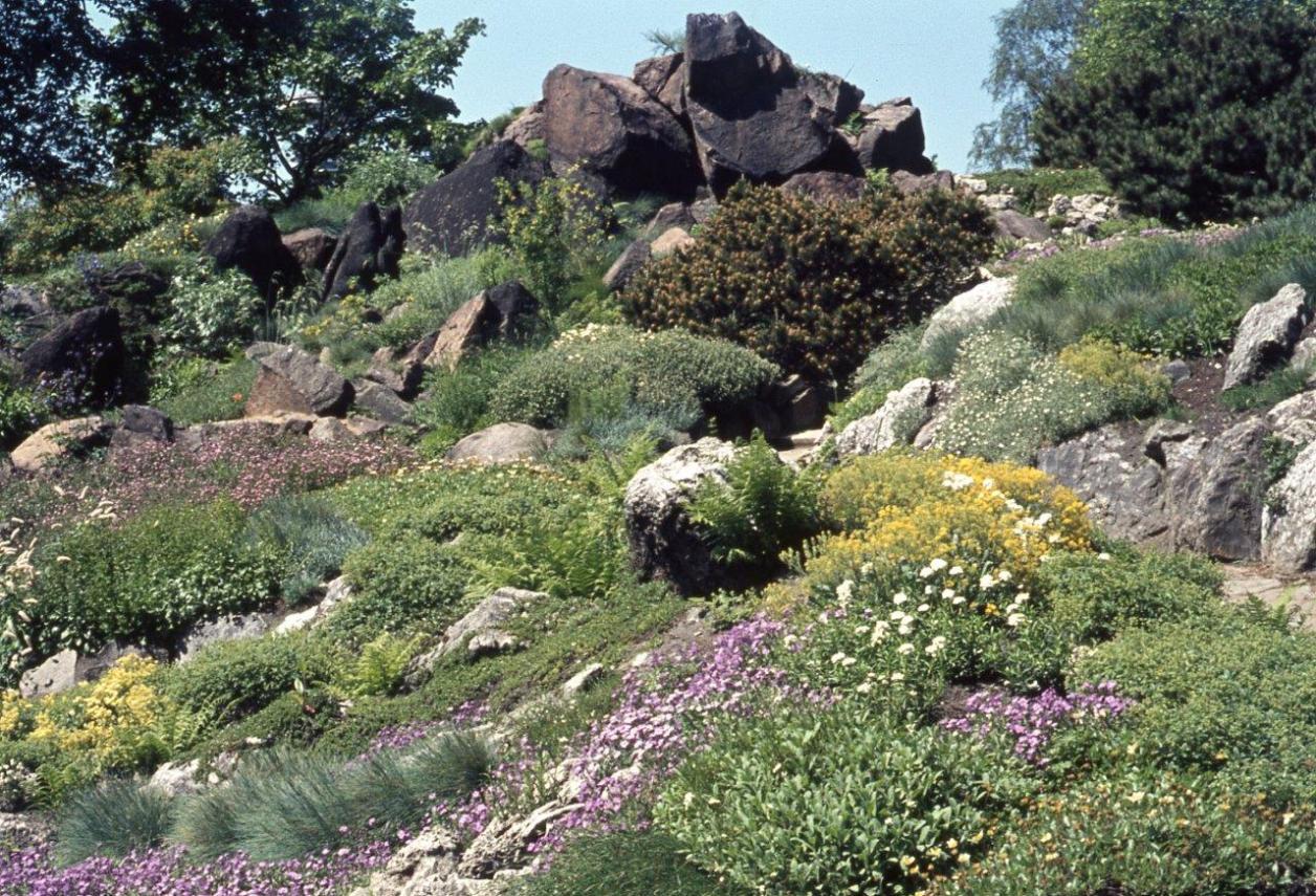 IGA 1973 (Quelle: Archiv der Gartendenkmalpflege der Behörde für Umwelt und Energie)