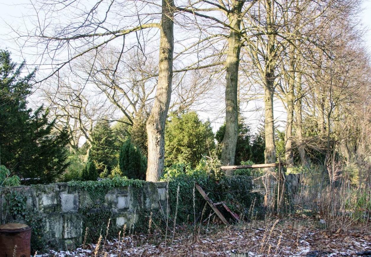 Friedhofsmauer an der Baustraße, Foto: Kirsten Petersen